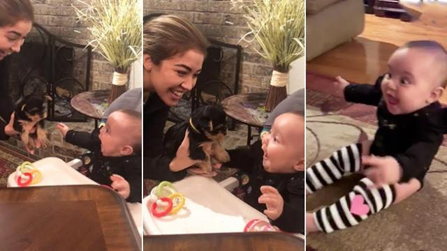 A video of a baby meeting her new puppy for the first time is going viral for all the right reasons