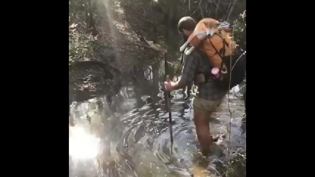 Blind dog goes on epic 1,100-mile hike to help gain back her confidence 2