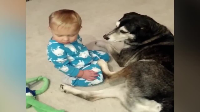 Baby is so sleepy - but it's the dog's reaction that made mom run for the camera