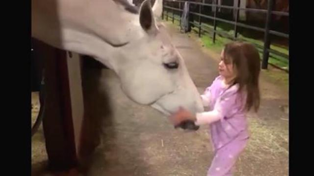 Tiny girl wants to calm giant horse when horse's response has mom running for the camera