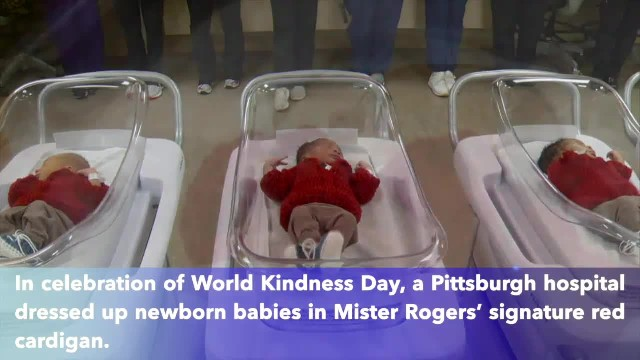 Newborn babies at Pittsburgh hospital dressed up as Mister Rogers to celebrate World Kindness Day