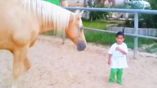 Horse walks up to little boy with rare disorder & leaves his