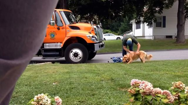 Garbage man is unaware he's being filmed, what he does to homeowner's dog is quickly going viral