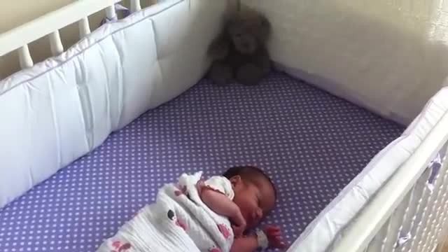 Baby won't stop crying at home - watch the touching way her boxer reacts