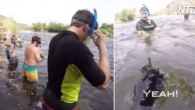 They found valuables during their river snorkeling adventure and two are working iPhones