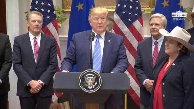 President Trump Makes an Announcement on EU Trade
