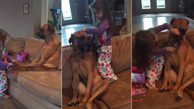 Gentle giant plays along with his human friend; pretends to be a patient while she gives her a medic