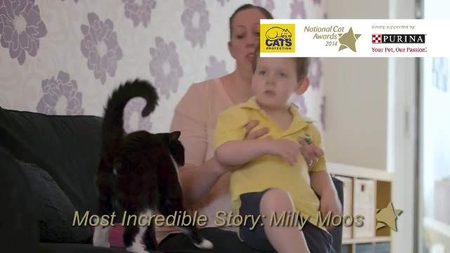 Boy Who Was Anxious About Starting Preschool Gets Reassurance From Their Family Cat!