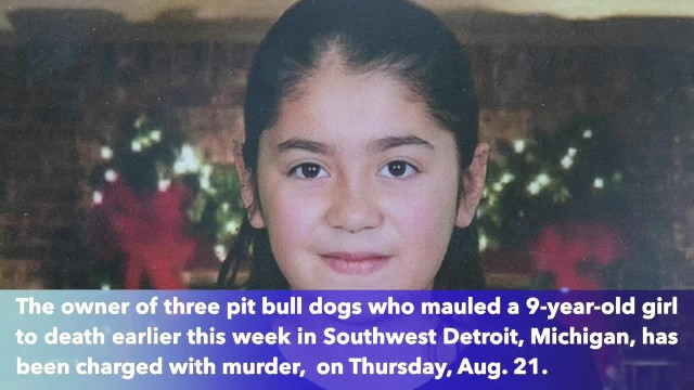 Dog owner charged with murder in fatal mauling of 9-year-old Detroit girl