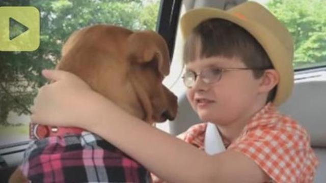 Mom brings home a rescued pit bull. Now watch what happens when he meets their autistic son