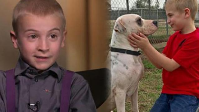7-year-old rescues more than 1,300 from high-kill shelters – wins huge award