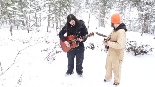 Singers record a song in the forest sanctuary and surprised when wolves join in