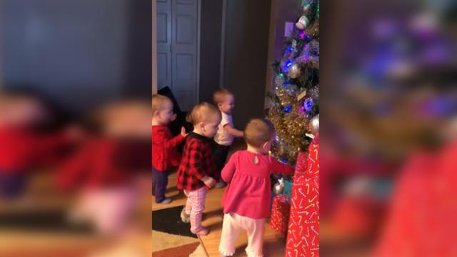 Watch these four siblings' adorable reactions when the realize grandma put up the Christmas tree