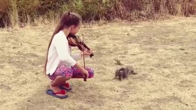 "Little girl practicing ""Hallelujah"" outside when squirrel ""ambushes"" with extraordinary moment"
