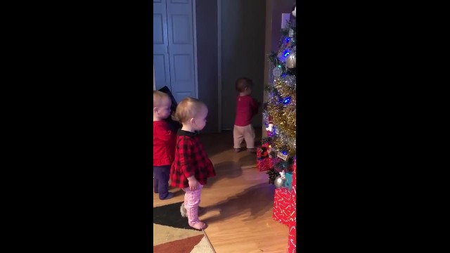 Quad Babies Discover 'Grammy' Put Up Christmas Tree With Their Filmed Reactions Melting Hearts