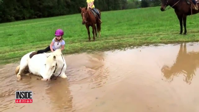 Mom confused why horse bucks little girl until his true intentions are revealed seconds later