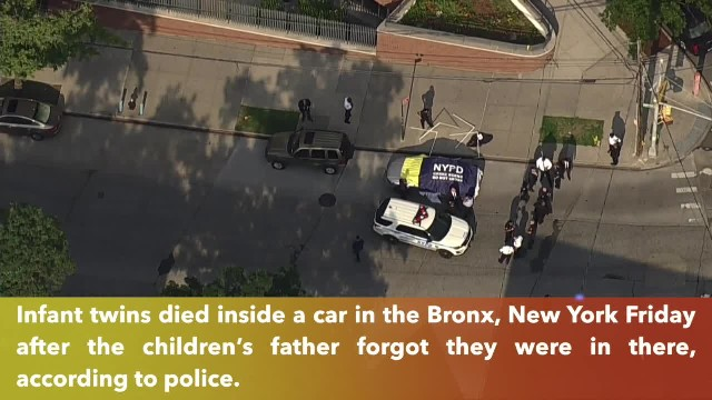 Twin infants found dead in Bronx car after father forgot them