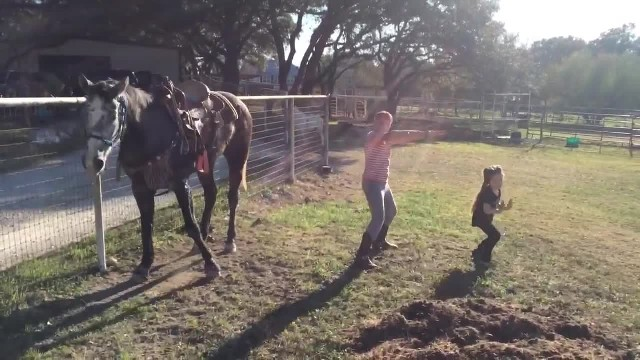 Mom films as silly horse dances along with her daughters