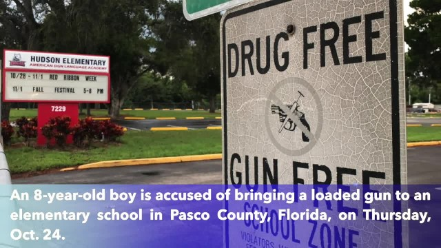 Boy, 8, accused of bringing loaded gun to elementary school in Pasco County