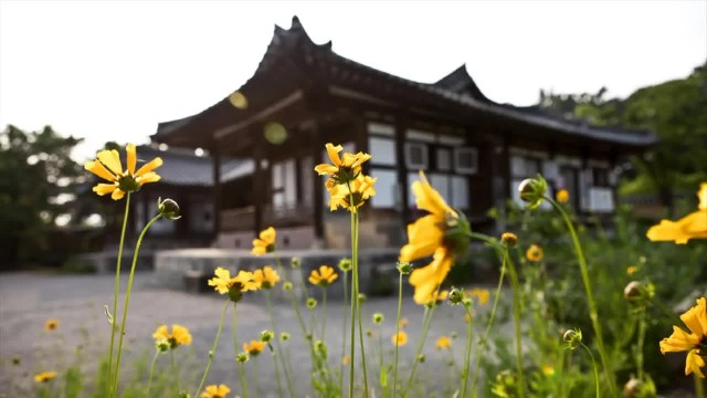 Visit This Traditional Korean Tea House With a Conscience