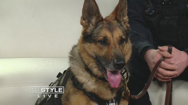 Brady's K-9 Fund raises money to buy bulletproof vests for K9 officers