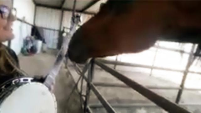 A young woman tried to serenade her horse with the banjo, but he took over instead