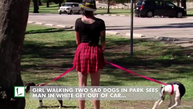 Girl walking 2 sad dogs in park sees man in white get out of car, knows he's their real owner