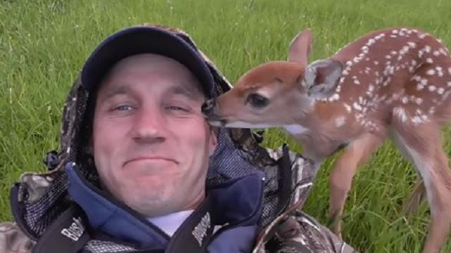 Baby deer refuses to leave the human who saved her life