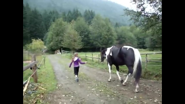 HORSE FARTS SO LOUD HE SCARES HIMSELF & LITTLE GIRL