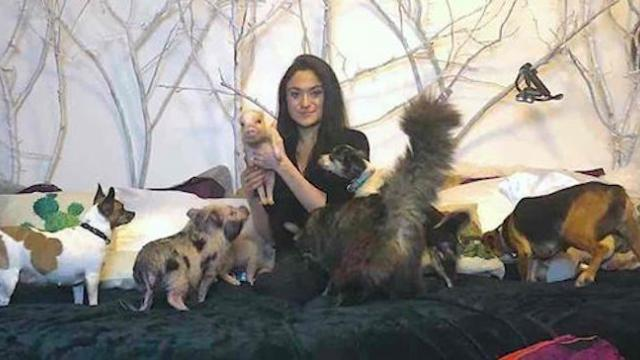 Woman shares home with 90 rescue animals and spends $10,000 on