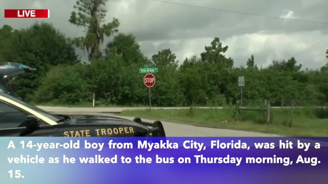 14-year-old boy hit by vehicle that failed to stop for bus in Florida