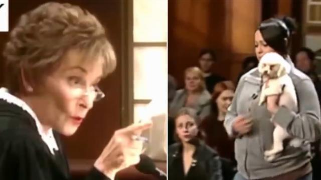 Judge Judy reaches verdict seconds into case after dog's reaction to plaintiff