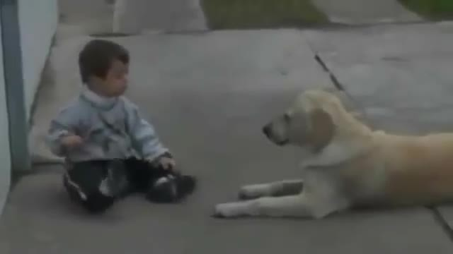 Boy with Down syndrome has no friends. The dog's reaction brought everyone to tears