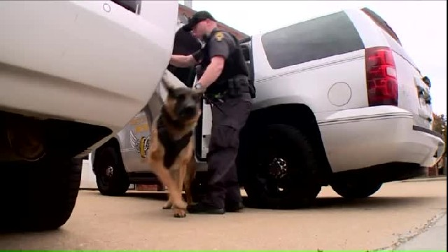 Boy notices police K-9 on TV  without protective vest, raises $90,000 to save K-9s from bullets