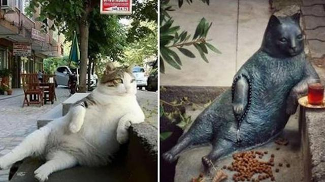 Famous cat passes away, so city honors him with a statue at his favorite spot