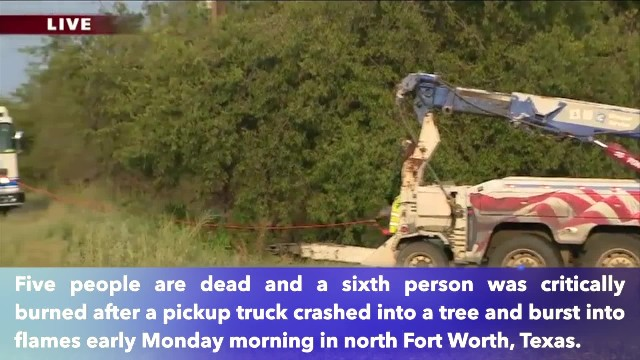 5 dead, another critically injured after truck crashes into tree in Fort Worth