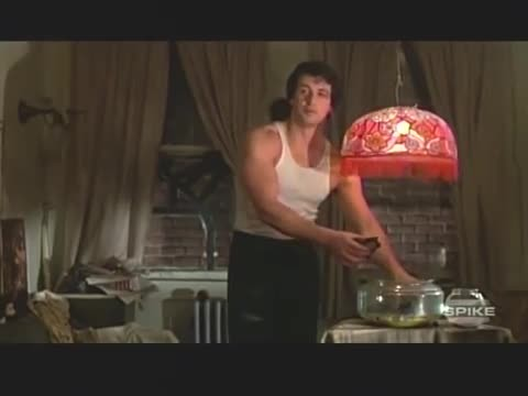 The pair of turtles that featured in 'Rocky' are still alive and kicking and here is Stallone with t
