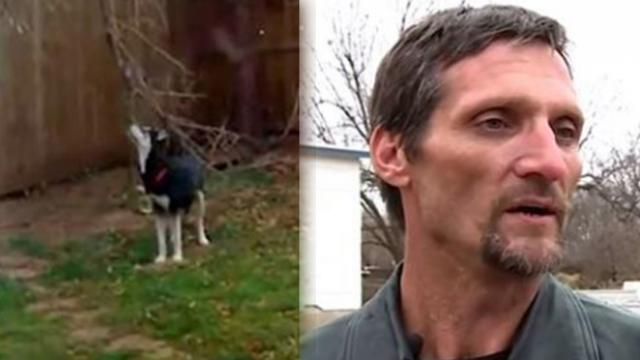 His dog was stolen from his yard 6 years ago. Today he got a message that left him shaking