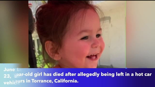 Toddler dies after being left in car in California while mother allegedly drank with friend