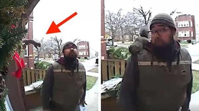UPS driver shares a magical moment with a random friendly
