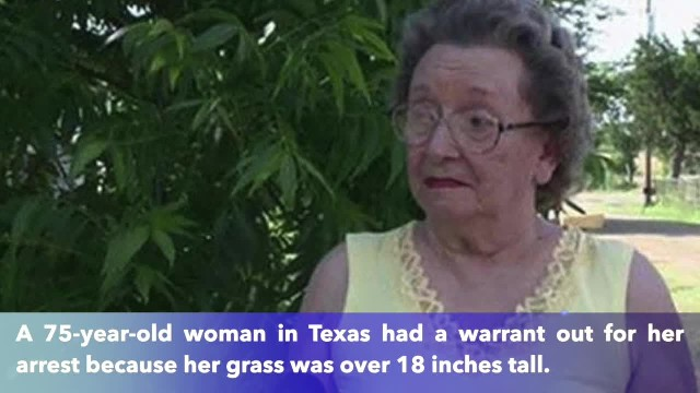 75-year-old woman catches 4 boys sneaking into yard, weeps when she notices what they are doing