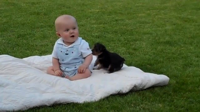This baby was just enjoying a day in the park when suddenly this pup approached