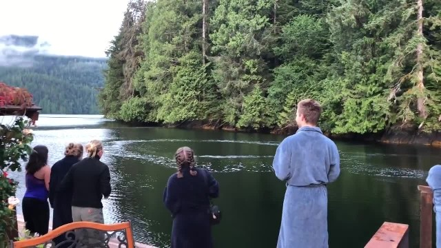 Canadian lodge guests spot rising ring of bubbles, are left in awe when creatures finally breach