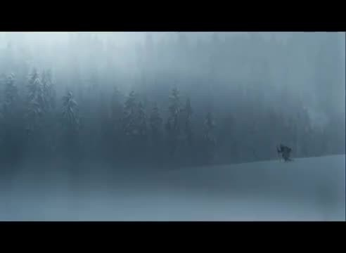 Exhausted man collapses in the forest, and the wolves start to close in