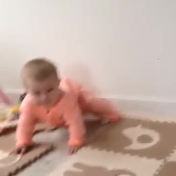 Tiny baby is learning to crawl, but it's the family dog that has Internet in laughter