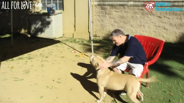 After Losing Their Home, A Rescue Dog Helps His Family Move Forward