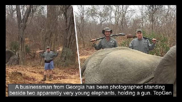 Businessman Proudly Poses With 'Baby Elephants' He Shot In Africa – Claims It Was Self Defense