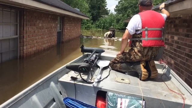 Hero Spots Exhausted Pit Bull Who's Been Stranded In Floodwaters For 16 Hours