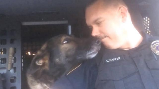 Officer honors beloved K-9 partner with final radio call after