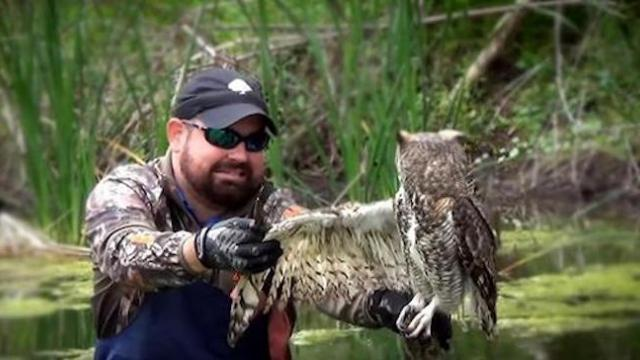 Owl is trapped and frightened, but watch unanticipated response when man moves in to help